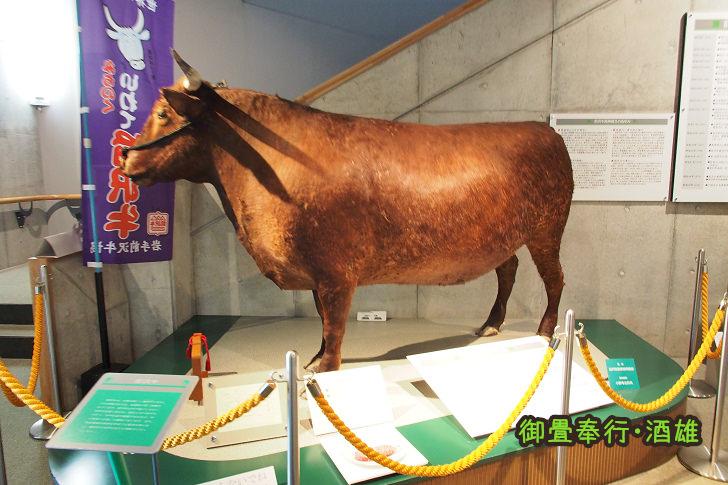 [岩手景點]牛的博物館-徹底了解和牛精品「前沢牛」的一切