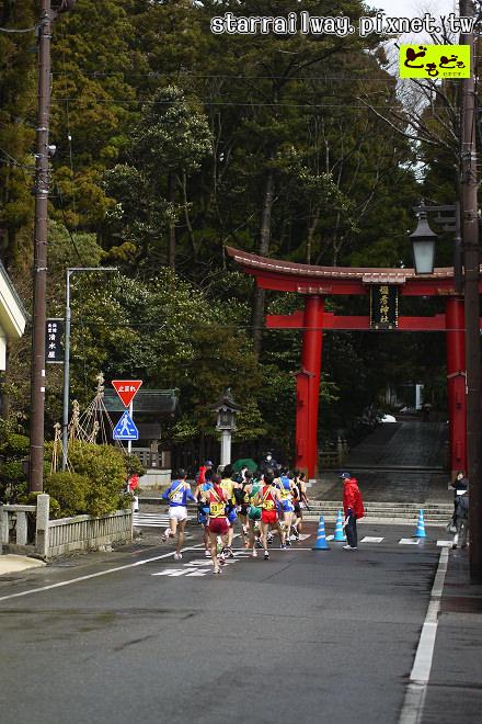 [新潟]深山樹林裡的彌彥神社,巧遇馬拉松選手